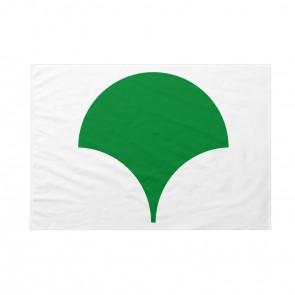 Bandiera Tokyo